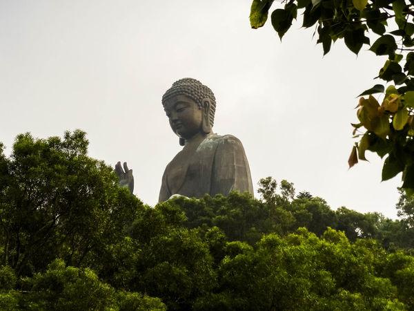 Hong Kong Tian Tan Buddha (Giant Buddha) 天壇大佛 Art And Craft Buddhist Religion Giant Buddha Human Representation Idol Low Angle View Religion Sculpture Spirituality Statue Tree