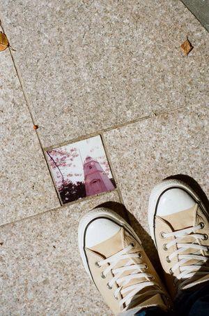 Film Photography SAKATA YAMAGATA Shoes