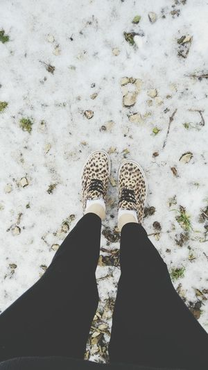 Winter Vans <3  Shoes ? Snow ❄ Leopard Morning
