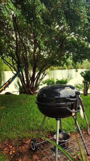 Front Or Back Yard Tree Grass No People Outdoors Day Green Color Beauty In Nature Sky Nature Lake Lake View Grill Grilling Grill Kettle Day Off Fathers Day Relax Man Cave Manly