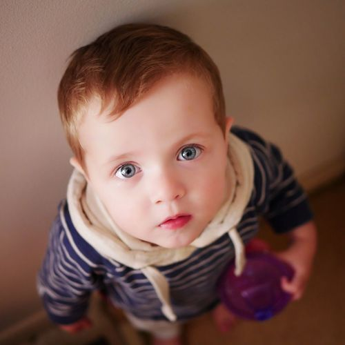Portrait Toddler  Innocence Childhood