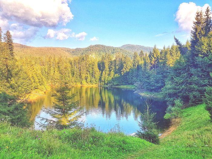 Mountain lake Water Reflection Sky Lakeside Lake Calm Countryside Grassland Green Standing Water Lakeshore EyeEmNewHere