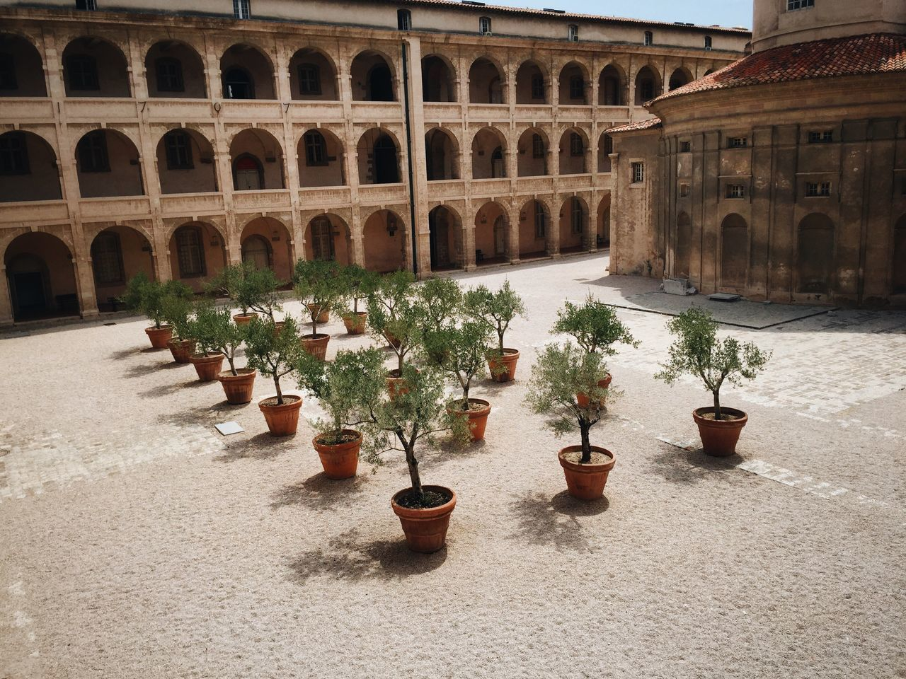 Potted plants arranged outside historic building