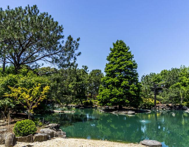 Landscape Nature Lake Colorful