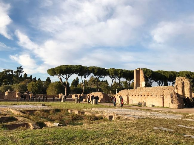 Rome Forum Romanum Ancient Architecture Tree Sky Landscape Nature Building Exterior Scenics Built Structure Architecture Ancient Cloud - Sky Outdoors