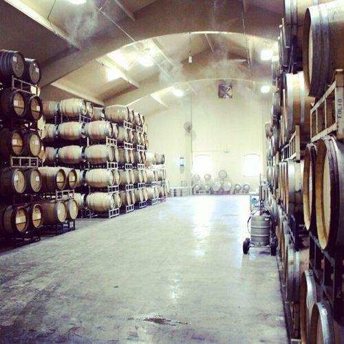 O_o MichaelMondaviFamilyEstate Wine NapaValley Ñapa nocal california michaelmondavi