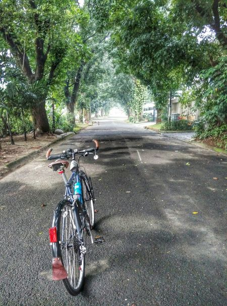 Goodmorning Enjoying Life Hello World On The Road Bicycles Bicycleride Cycling Around Mybikeride Cycling Green
