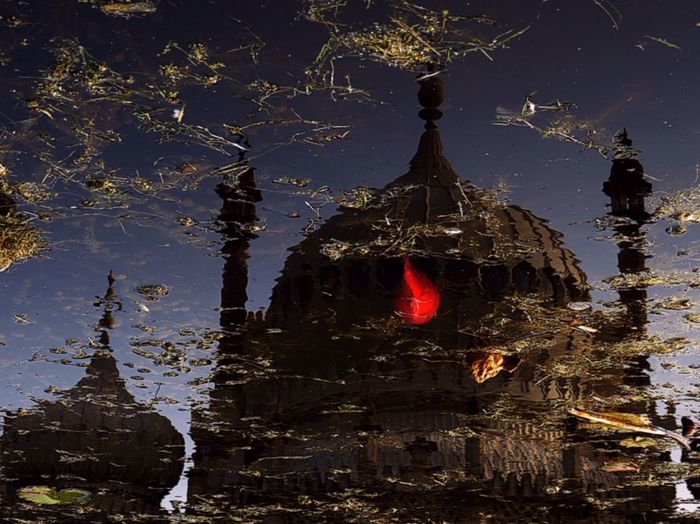 Fall Beauty for what it is and what is not a Reflection Fish Pond and the Pavilion at Royal Pavilion Gardens Urbanromantix Flip on Tuesday Water Reflections Open Edit My Best Photo 2015