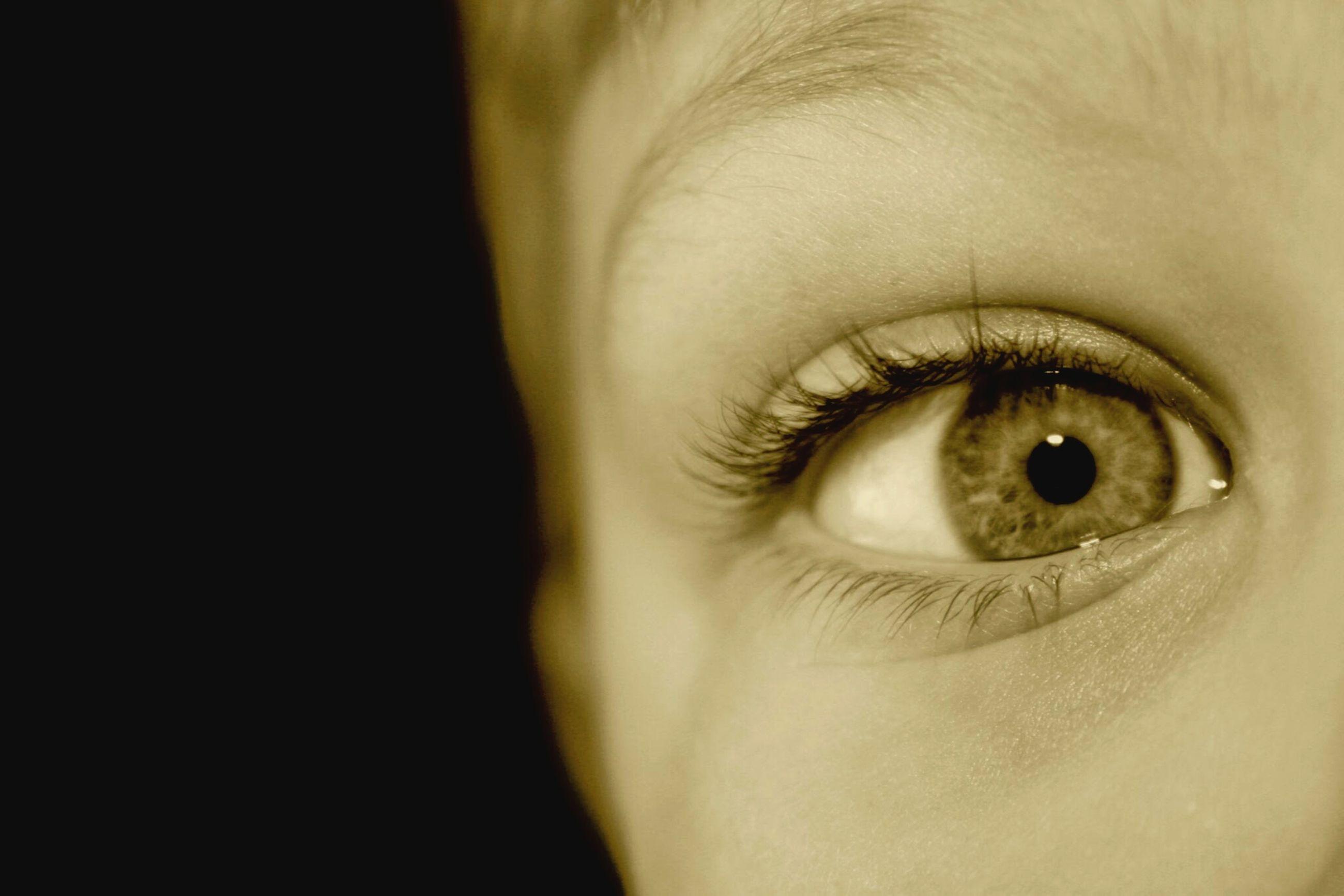 close-up, human eye, eyelash, part of, eyesight, human skin, sensory perception, looking at camera, human face, indoors, portrait, lifestyles, extreme close-up, studio shot, cropped, iris - eye, person