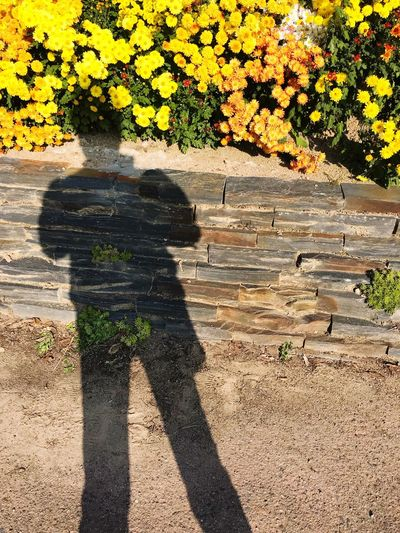 me myself and me Real People Day Sunlight Shadow Outdoors Standing Love Yourself