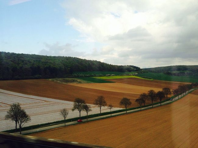 German Ordnung Train Window