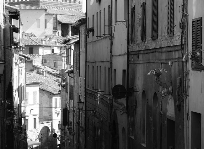 Could have walked the street of Siena all day long.... need to go back. Alley Architecture Building Exterior City City Street Italy Narrow Residential Building Residential District Siena Street Lights Monochrome Photography