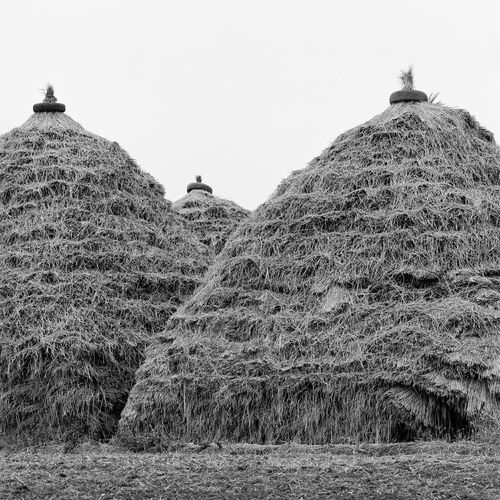 Thatched