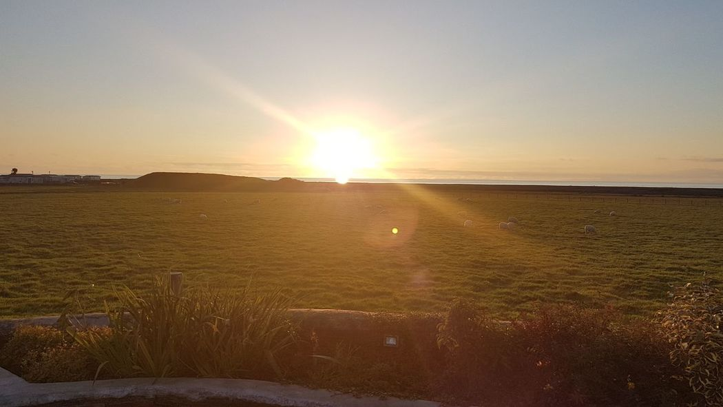 Sunset Rural Scene Horizon Agriculture Sunlight Sun Gold Colored Summer Field Sky