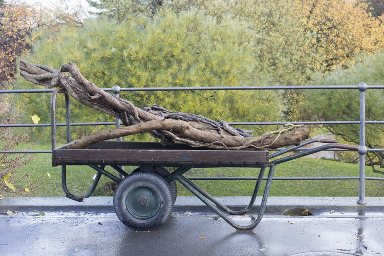 Side view of a horse cart