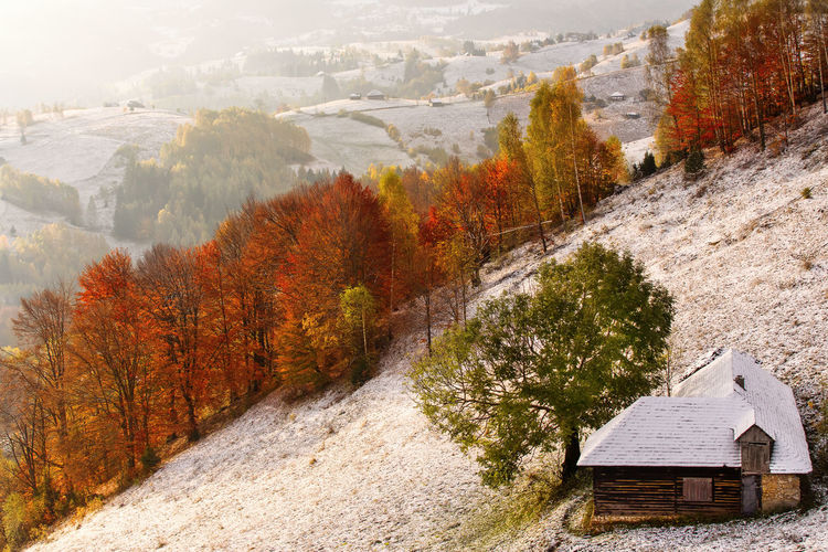 Scenic view of snow covered land during autumn