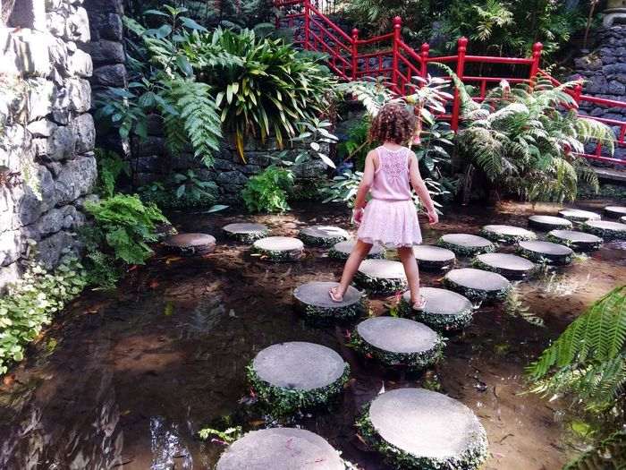 Funchal Nature Jardin Tree Water Full Length Childhood Standing Plant Moments Of Happiness