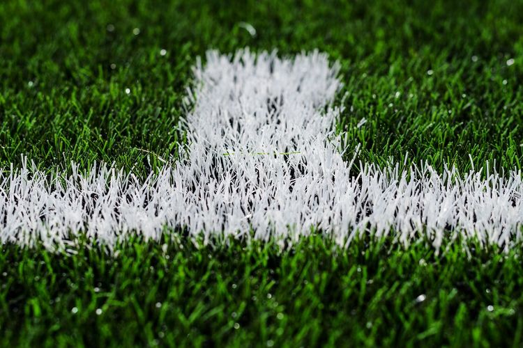 All weather pitch Soccer Field Close-up Grassblades Footballpitch Football Field Astroturf Artificialgrass Sportsground Sports Minimal Minimalism Green Color White Color Markings Animal Themes Grass Area