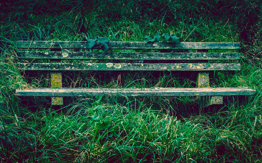 The old bench where they once sat. They talked about the future and how they would grow together.......and now....now there is nothing.. no hope, no dreams, no love. Abandoned Places Bench Empty Chair Forgotten Old Bench Overgrown Abandoned Close-up Day Empty Field Grass Green Color Growth Nature No People Old Outdoors Plant Reclaimed By Nature Wood - Material