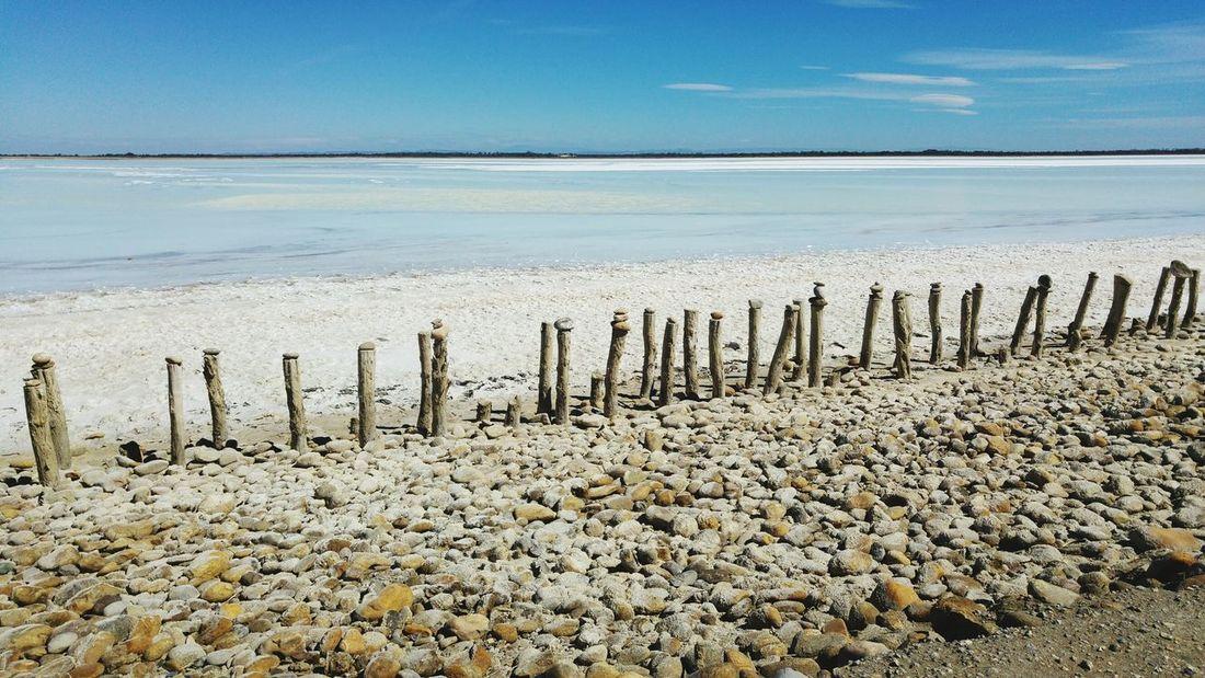 France LG G4 Camargue Selective Focus Summer2016 Travelling Summer Sea Relaxing Enjoying Life