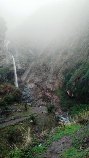 huarochiri Fog Nature Beauty In Nature Forest No People Scenics