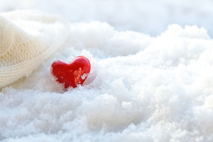 Close-up of snow covered strawberry