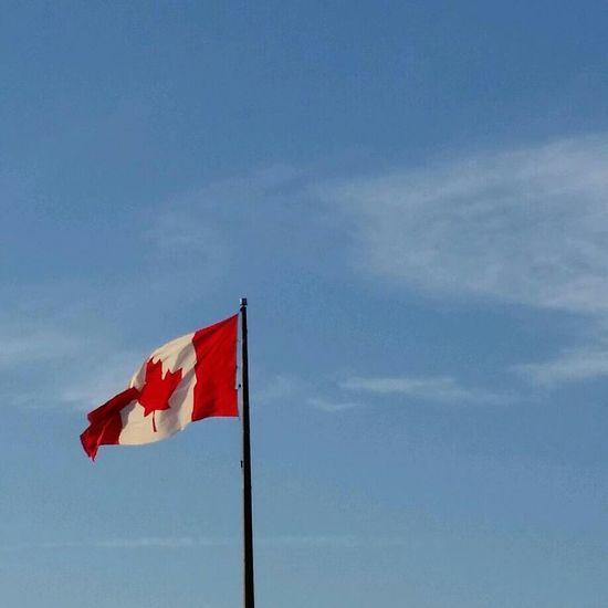 Flag Flags Flags In The Wind  Flag In The Wind Flag Pole Canada Flag Beauty In Nature Beautiful Beautiful Day Canada Beautiful Country