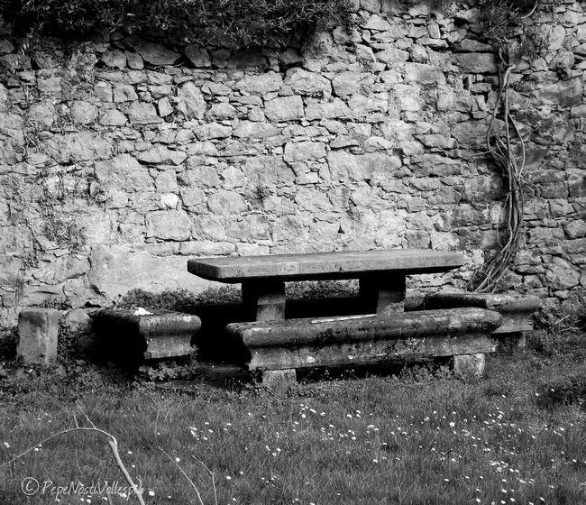 No People Outdoors Blackandwhitephotography Black And White Collection  Blackandwhite Photography Pola De Siero Garden Oldgarden