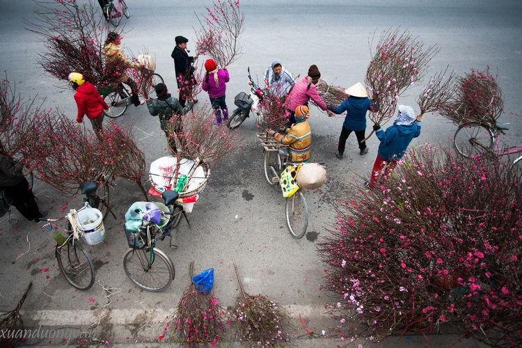 Tet Bicycle Day