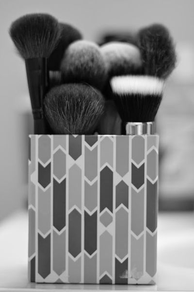 make-up brushes Canon T3i 50mm lens.