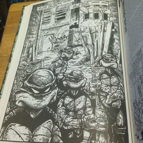 Original comic Art pages From Eastman and Laird Teenage Mutant Ninja Turtles Eastman And Laird ArtWork Comic Art Comic Books Comics Original Art Pencil Art Teenage Mutant Ninja Turtles  TMNT🐢