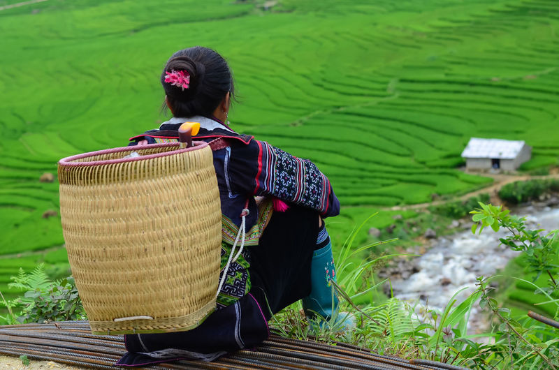 Rear View Of Woman With Basket Sitting Against Terraced Field