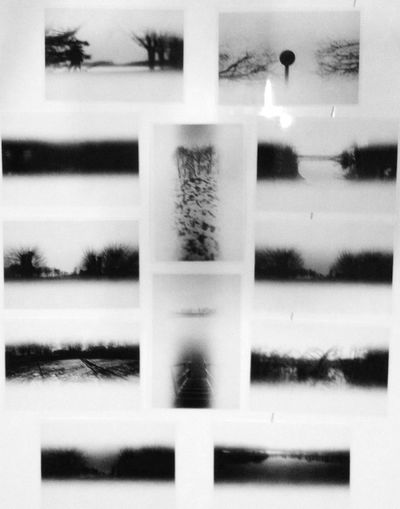 You don't have pictures until you print them. Blackandwhite Analogue Photography Caffenol