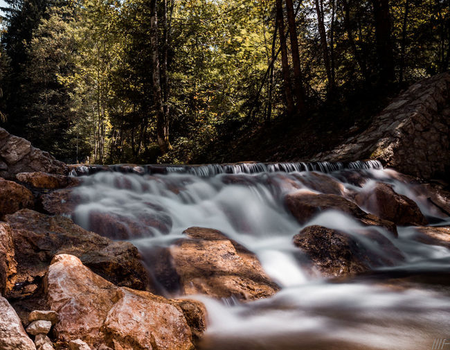 Tree Land Forest Plant Motion Flowing Water Beauty In Nature Water Nature Blurred Motion Long Exposure Rock No People Rock - Object Scenics - Nature Flowing Waterfall Day Solid Outdoors Stream - Flowing Water WoodLand Power In Nature