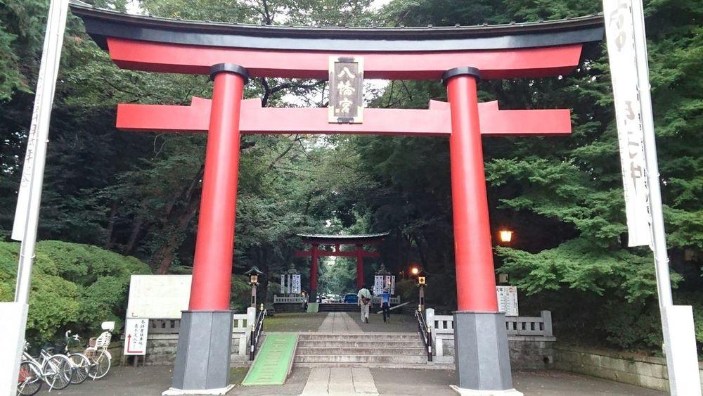 癒されます Healing SPIRITUAL HEALING Healingtime Healingthebodyandmind TORII Red Trees Flags Approach To Shrine Festival