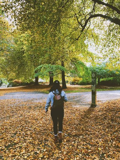 Rear view of woman standing in park during autumn