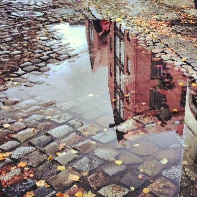 Nice puddle Puddle Klaipeda