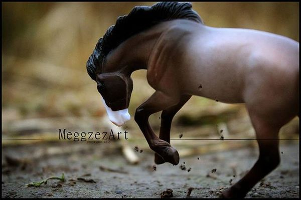 """""""We're all searching for someone who's demons play well with ours"""" . . Breyer Breyers Breyerhorse Breyerhorses Breyerhorsephotography Modelhorse Modelhorsephotography Artistresin Toyphotography Horse Horses"""