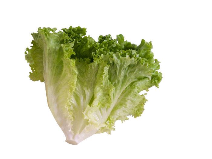 Lettuce, Fresh