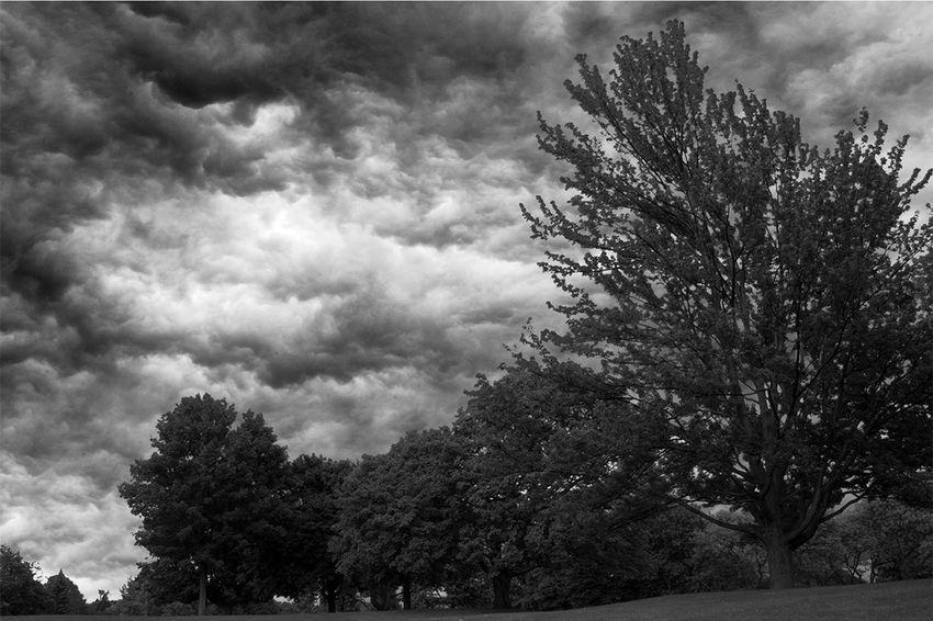 stormy evening Stormy Evening