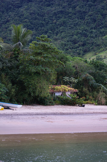 Beach Beachphotography Beauty In Nature Brasil ♥ Day Forest Mountain Nature Nikon D5100  Outdoors Rio De Janeiro Sand Scenics Sea Tarituba Tranquil Scene Tranquility Tree Water Paraty - RJ Paraty