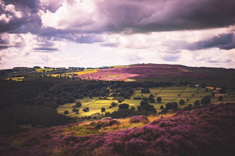 Peak District View Landscape Nature Hill Multi Colored Beauty In Nature Outdoors Field Rural Scene Photograph Countryside Life Freshness Tranquility Horizon