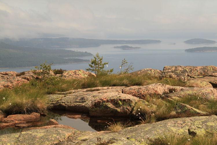 UNESCO world heritage Skuleskogen Water Scenics - Nature Plant Sea Outdoors Land Rock Skuleskogen High Coast Sweden Baltic Sea Högakusten UNESCO World Heritage Site Unesco