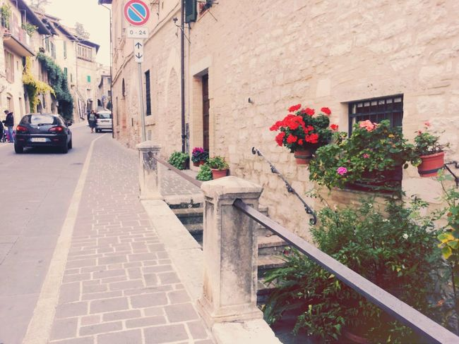 Assisi Taking Photos Photography Pretty