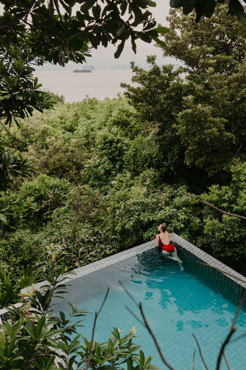 Woman swimming in pool by trees in forest