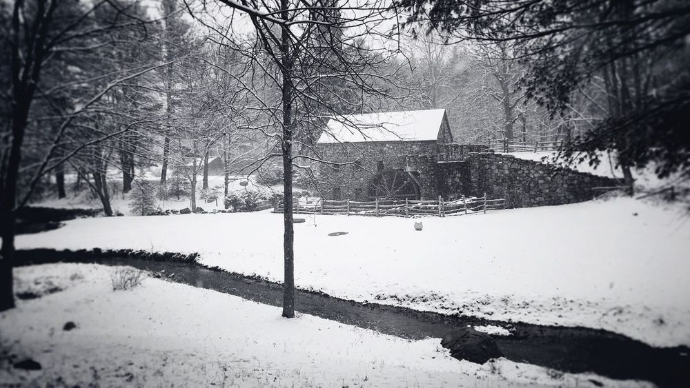 Winter Wonderland at the Grist Mill Snow Winter Cold Temperature Weather Bare Tree Tree Nature Day Outdoors Road No People Basketball Hoop Building Exterior Snowing Basketball - Sport