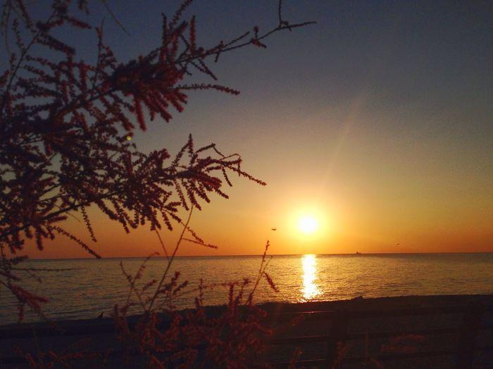 Sun rising ❤️