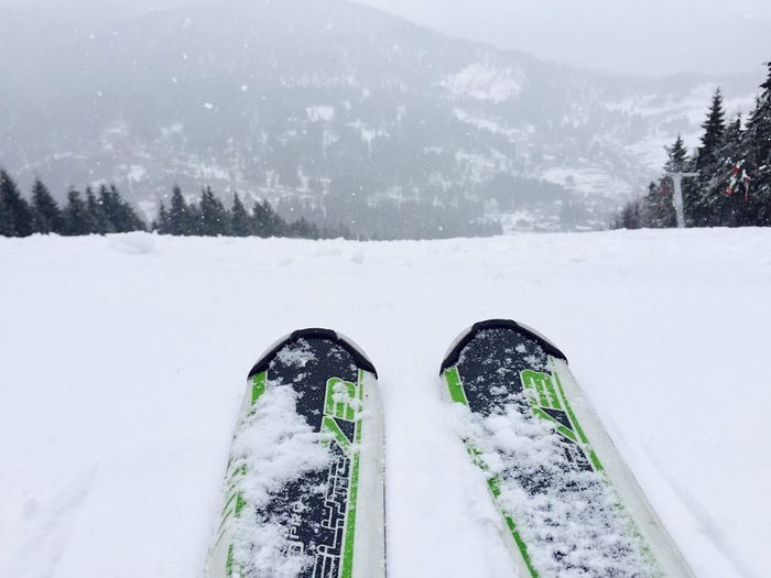 Close up of skis with snowy evergreen forest ahead Skiing Skis Close Up Skier Slope Snow Winter Mountains Resort Sports Forest Feet Nature