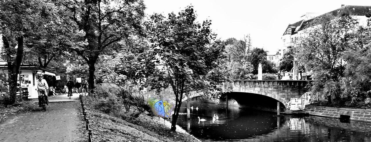 B/W Photography Monochrome Taking Photos Walking Around