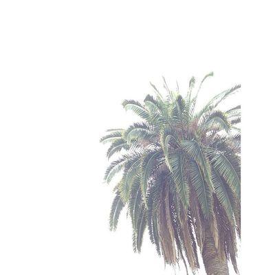 Liveauthentic All_shots Photooftheday Visualsgang VSCO Vscocam Travel Traveling Sociality Peoplescreatives Wanderlust Justgoshoot Visualsoflife Igers Royalsnappingartists Picoftheday Inspiration Instadaily Globaldaily Instamood Igoftexas Instalove Igershouston Igershou Houston vscogood igmasters passionpassport huffpostgram igtexas
